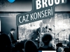 bruut-caz-konseri-pdf